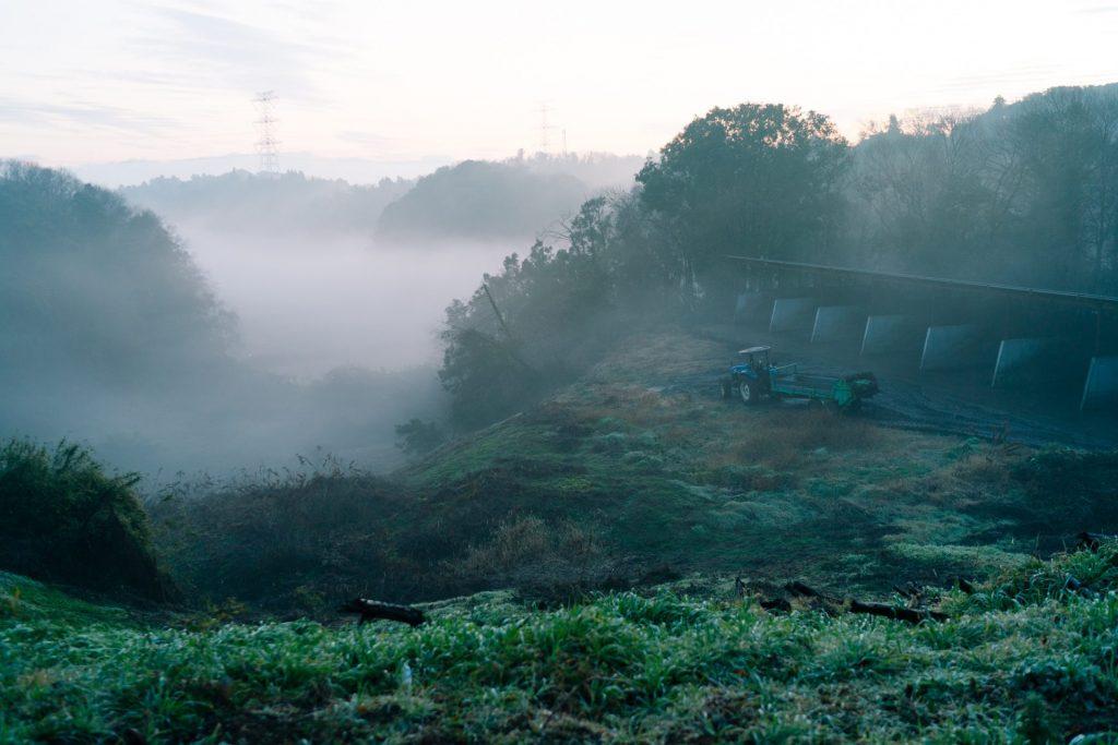 成田ゆめ牧場キャンプ場の朝